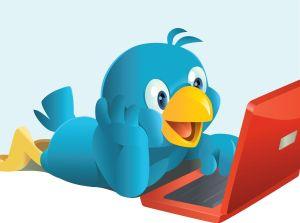 197363-Twittern-bedeutet-zwitschern---so-wie-die-Voegel-zwitschern